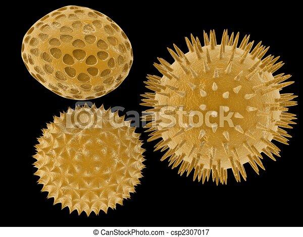 pollen - csp2307017