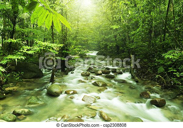 Mountain stream - csp2308808