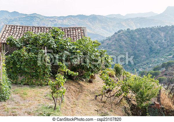photo de agricole hangar dans a petit sicilien village csp23107820 recherchez des. Black Bedroom Furniture Sets. Home Design Ideas