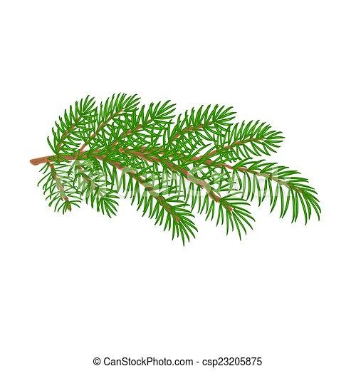 Spruce Tree Cartoon Branch Spruce Christmas Tree