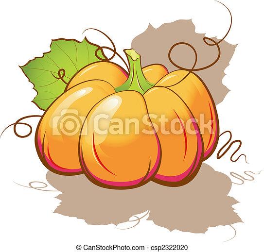 Pumpkin - csp2322020