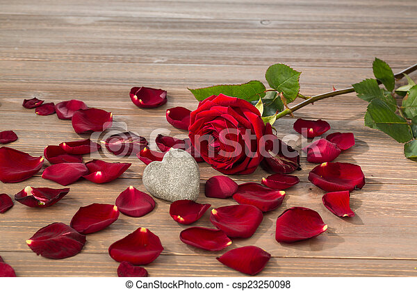 roses as a gift and surprise to a feast. photo icon for birthday, mother\'s day, love, valentine\'s day