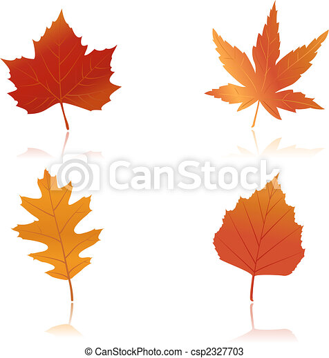 Vibrantly colored autumn leaves - csp2327703