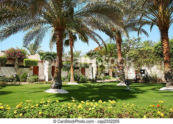 images de maison exotique palmtree csp2332205 recherchez des photographies des photos des. Black Bedroom Furniture Sets. Home Design Ideas