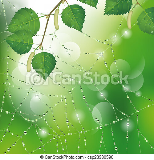 spider web with dew clip art � cliparts