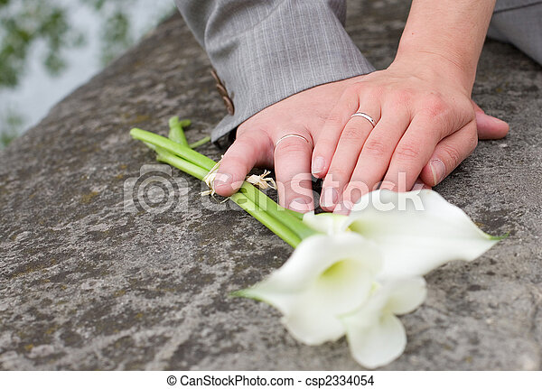 Just married. Hands of bride and groom with wedding rings