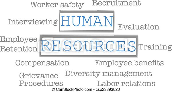Human Resources Vector Human Resources Business Words