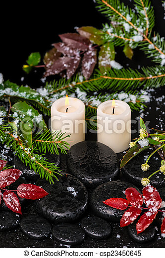 winter spa concept of red leaves with drops, snow, evergreen bra