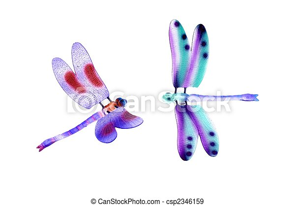 two colorful dragonfly flying insects isolated - csp2346159