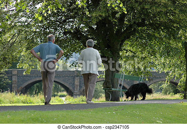 An elderly couple walking their dog in the sunshine - csp2347105