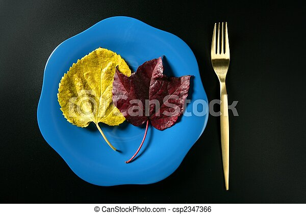 Metaphor, healthy diet low calories colorful vegetarian leaf meal - csp2347366