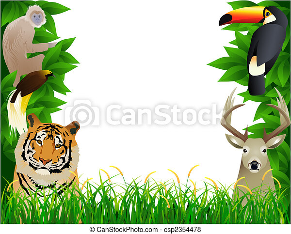 Wild animal - csp2354478