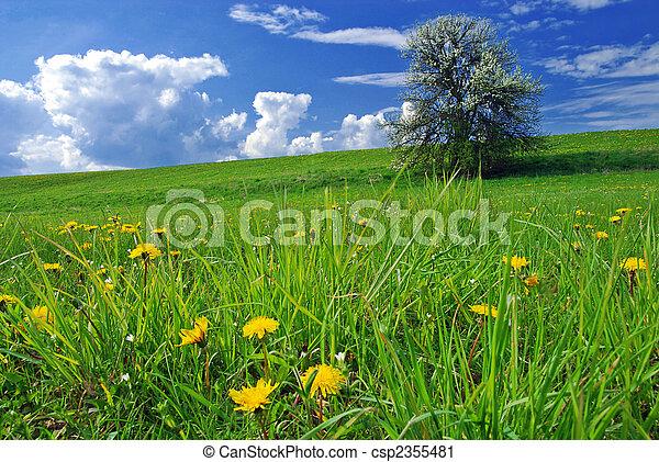 Spring landscape - csp2355481