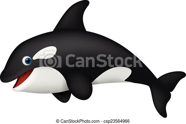 Killer Whale Clip Art Of – Clipart Free Download