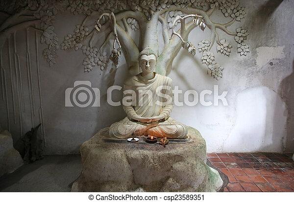 Araniya Panchakapaduwa Bentota - csp23589351