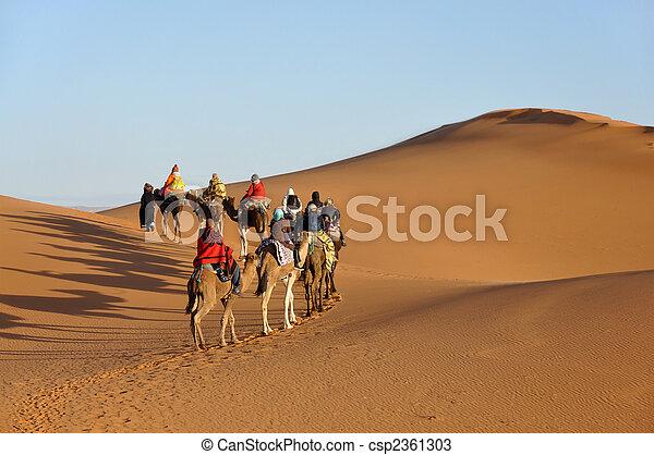 Camel trip in Sahara desert Merzouga, Morocco, north Africa - csp2361303