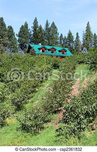 Orchard estate - csp2361832