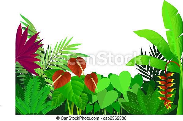 Forest - csp2362386