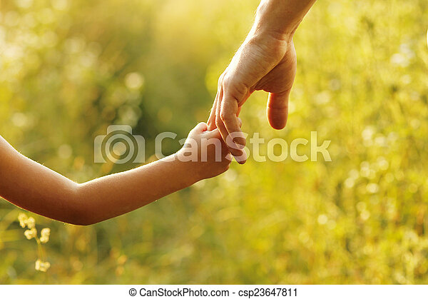 parent holds the hand of a small child - csp23647811