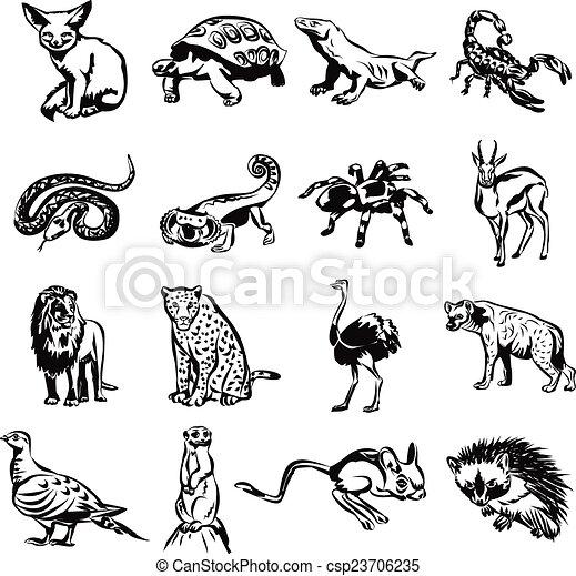 Animals in desert drawing
