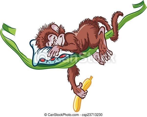 Image of Sleeping Monkey on