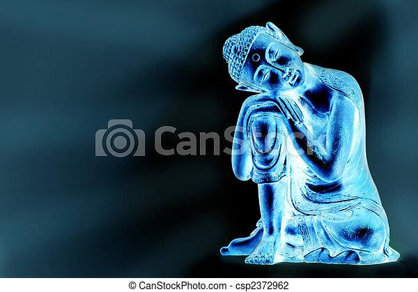 Luminous Buddha - csp2372962