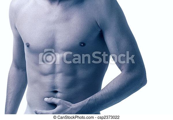 male torso - csp2373022