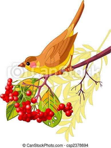 Autumn bird - csp2378694