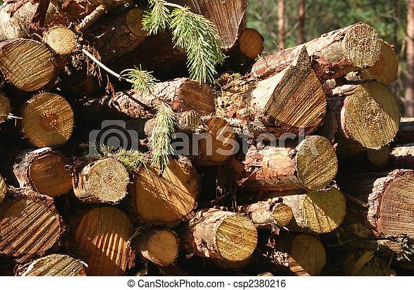Wood Renewable Energy - csp2380216