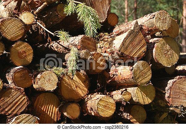 Wood Renewable Energy - csp2380216