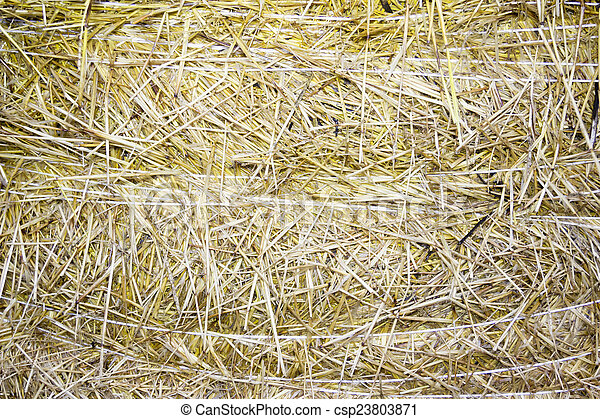 background of close-up bale of straw - csp23803871