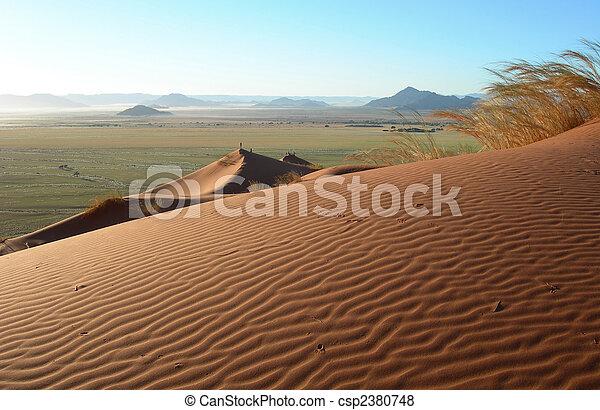 Sand dunes in the Kalahari desert  - csp2380748
