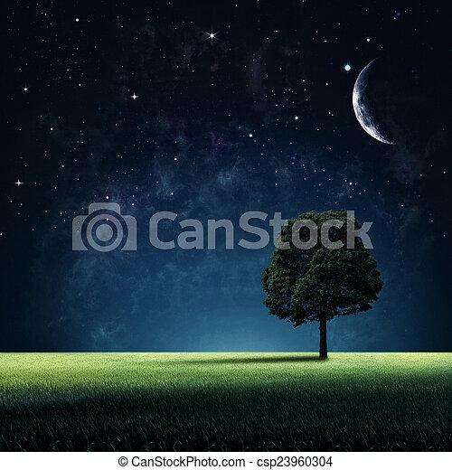 natürlich, starry, abstrakt, hintergruende, design, dein, night. - csp23960304