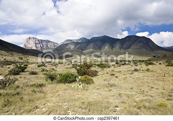 Guadalupe Mountains - csp2397461