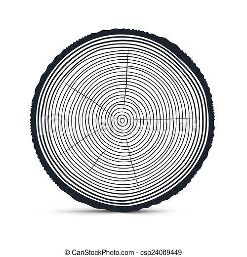 Tree Ring Drawings Tree Rings Vector
