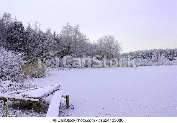 Frozen lake in forest in cold winter season