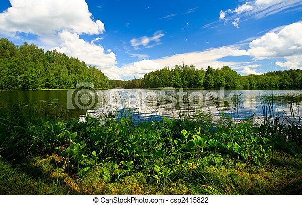 foresta, lago - csp2415822
