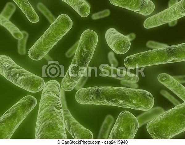 major bacteria - csp2415940