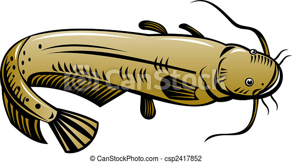 Clip Art Catfish Clipart catfish illustrations and stock art 420 illustration high angle of a brown high