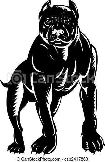 Drawings of Pitbull full frontal - Illustration of a black pitbull ...