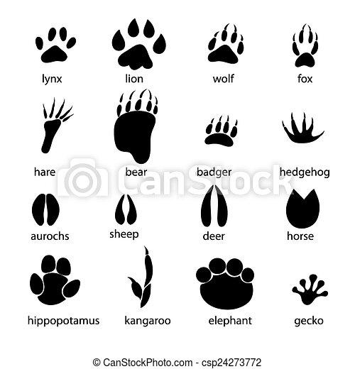 Vectors Illustration Of Set Of Different Animal Tracks