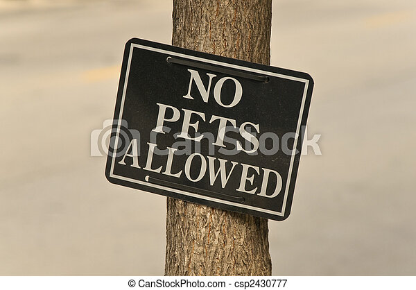 No Pets Allowed - csp2430777