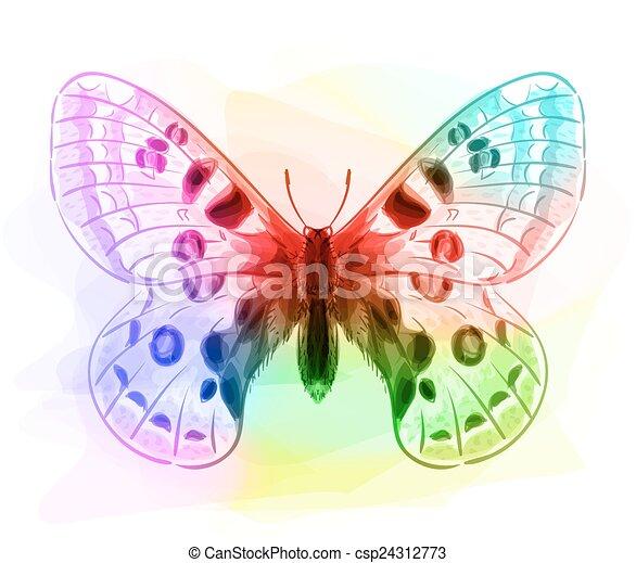 Butterfly. Iridescen colours.  - csp24312773