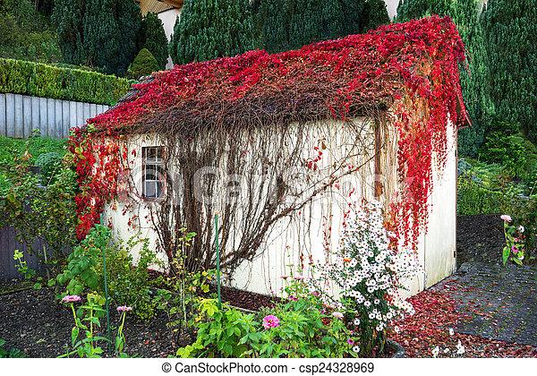 Image de envahi jardin hangar rouges feuilles for Hangar jardin