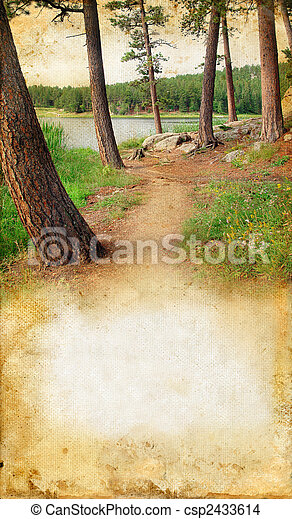 Woods by a Lake on Grunge background - csp2433614