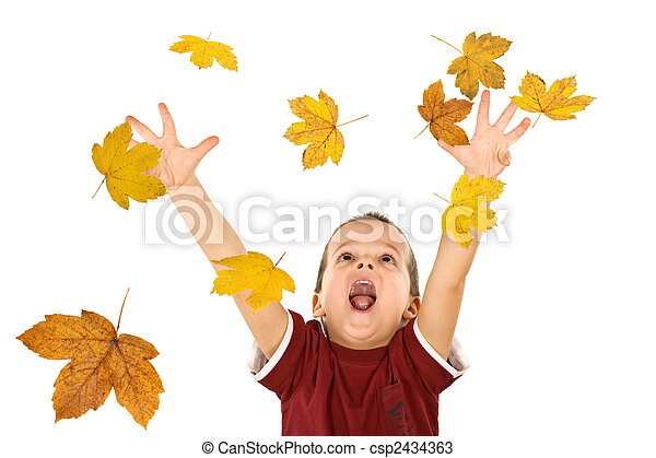 Happy boy reaching for the falling autumn leaves - csp2434363