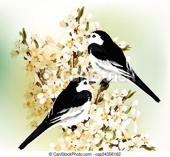 Vektor paar schwarz weißes vögel si stock illustration