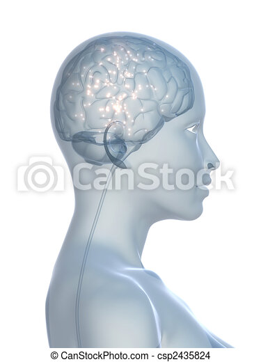 active brain - csp2435824