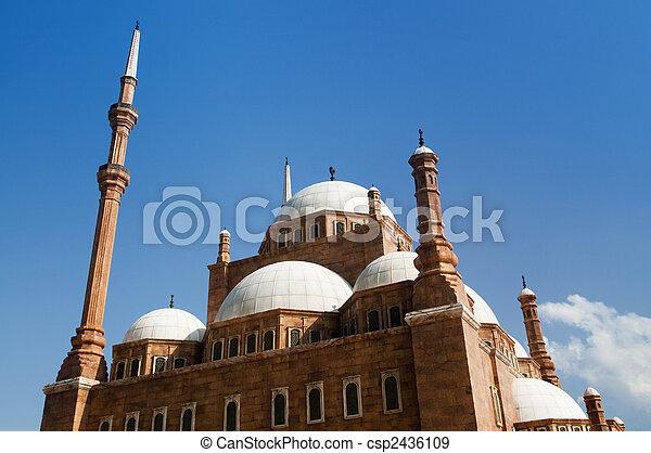 Mohammed Ali Mosque. - csp2436109