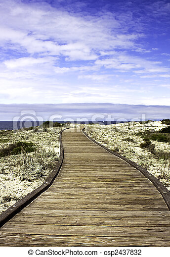 Boardwalk over sand dunes with blue sky and clouds in Asilomar State Park on the coast near Pacific Grove, California - csp2437832
